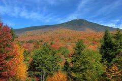 3个颜色秋天 图库摄影