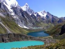 3个huayhuash湖牛拉车旅行 图库摄影