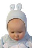 3兔宝宝 库存图片