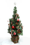 3圣诞节没有结构树 免版税库存照片