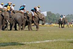3头大象马球 免版税库存图片