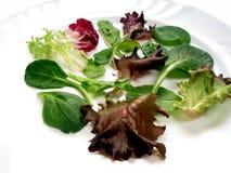 3婴孩蔬菜沙拉 免版税图库摄影