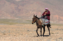 3巴巴里人摩洛哥人 免版税库存图片