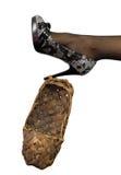 3新的老s穿上鞋子妇女 免版税库存图片