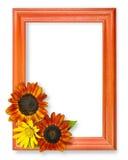 3朵花框架 免版税库存照片