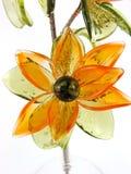 3朵花玻璃 库存图片