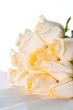 3朵香槟玫瑰 库存照片