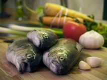 3条新鲜的鳟鱼 库存图片