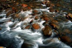 3条河木头 库存照片
