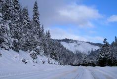 3条路冬天 库存照片