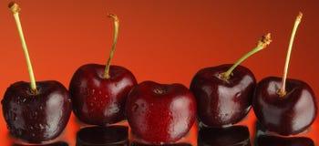 3棵樱桃甜点 库存图片