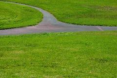 3棵草路径 免版税库存照片