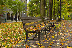3沿长凳下跌叶子公园 库存图片