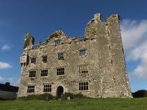 3爱尔兰废墟 库存图片