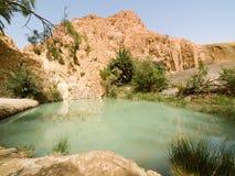 3片沙漠绿洲 免版税库存图片