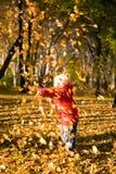 3片秋天儿童叶子投掷 免版税库存照片