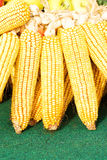 3玉米 免版税库存图片
