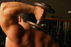3纯的肌肉 免版税图库摄影