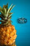 3菠萝 免版税库存照片