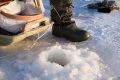 3 αλιεύοντας πέρκα Στοκ Εικόνες