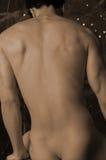 3 αρσενικός nude Στοκ φωτογραφίες με δικαίωμα ελεύθερης χρήσης
