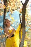 3 ηλιακός θερμός φθινοπώρο Στοκ Φωτογραφίες