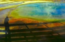 3 κανένα yellowstone Στοκ Φωτογραφία