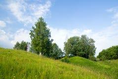 3 μπλε δέντρα ουρανού τοπίων χλόης Στοκ εικόνα με δικαίωμα ελεύθερης χρήσης
