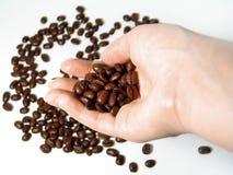 3 σειρές καφέ στοκ φωτογραφία