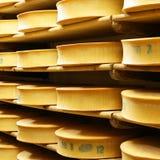 3 τυριά Στοκ Φωτογραφία