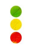 3 χρωμάτισαν τα φύλλα με μορφή του φωτεινού σηματοδότη Στοκ εικόνα με δικαίωμα ελεύθερης χρήσης