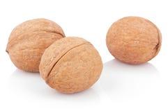 3 грецкого ореха на белизне Стоковое Изображение RF