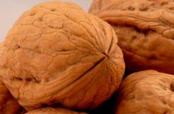 3 грецкого ореха Стоковое фото RF