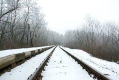 3 замороженных следа Стоковая Фотография