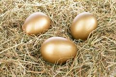 3 золотистых яичка в сторновке Стоковая Фотография