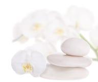 3 камня и белых орхидеи Стоковое Изображение RF