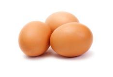 3 коричневых яичка на белой предпосылке Стоковое Изображение RF