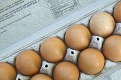 3 коричневых яичка органического Стоковые Изображения RF