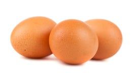 3 коричневых яичка цыпленка Стоковая Фотография