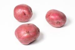 3 красных картошки на белизне Стоковые Изображения RF