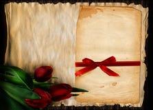 3 красных тюльпана Стоковое фото RF