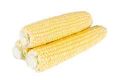 3 кукурузного початка Стоковые Фотографии RF