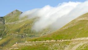 3 отсутствие pyrenees Стоковая Фотография RF