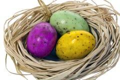 3 пасхального яйца в гнезде. Стоковая Фотография RF