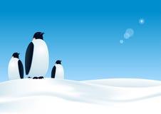 3 пингвина Иллюстрация штока