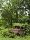3 похоронили листво заржавели тележка Стоковые Изображения