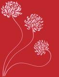 3 розы j Стоковая Фотография