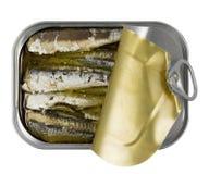 3 рыбы естественная омега Стоковая Фотография RF