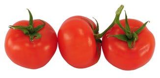 3 томата Стоковые Изображения