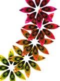 3 цветастых камня Стоковые Фото